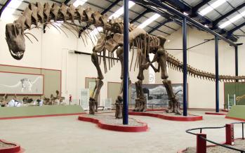 El dinosaurio más grande que jamás pisó la Tierra
