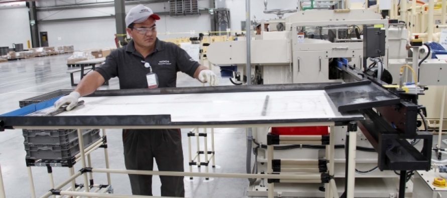 Desempleo en México, el cuarto más bajo de la OCDE, en mayo