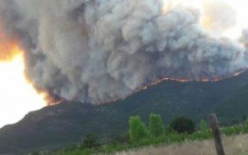 Calor e incendios castigan a Portugal y España