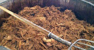 Carbón activado derivado de residuos de maguey limpiaría agua y aire