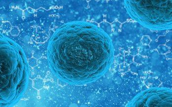 Nueva epidemia podría acabar con 900 millones de personas