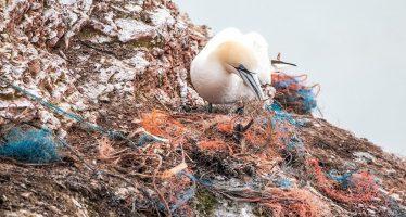 Ocean Cleanup: cómo limpiar el océano de plástico de una vez por todas
