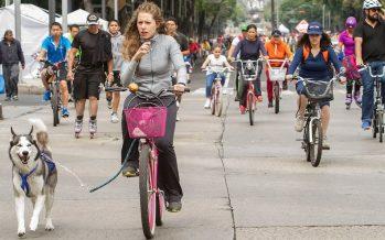 Cierran calles del primer cuadro por Día Mundial Sin Auto